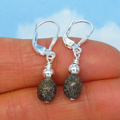Small Agatized Dinosaur Bone Fossil Earrings - Sterling Silver - Leverback - Dangle - Minimalist - Simple - Dainty - Woodland