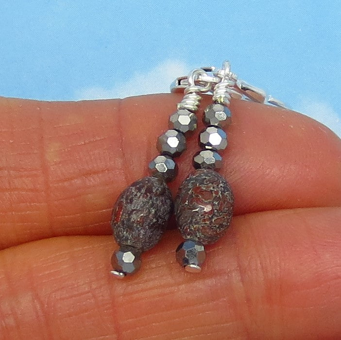 Small Agatized Dinosaur Bone Fossil Earrings - Sterling Silver - Leverback - Dangle - Crystal Accents