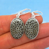 Rare Natural Black Fossil Coral Earrings - Leverback Dangle - 21 x 14mm Oval - Genuine - 925 Sterling Silver - 282002