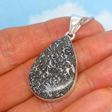 Genuine Dinosaur Bone Fossil Pendant Necklace - 925 Sterling Silver - Natural - Pear Shape Teardrop - 241587