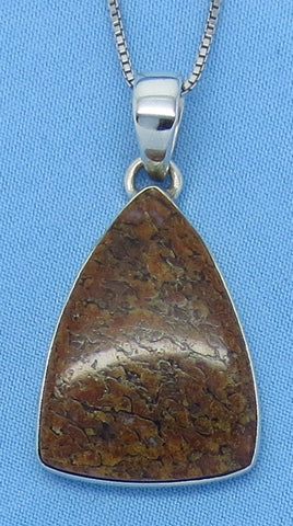 Dinosaur Bone Fossil Pendant Necklace - Sterling Silver - Trillion - Triangle - d161988