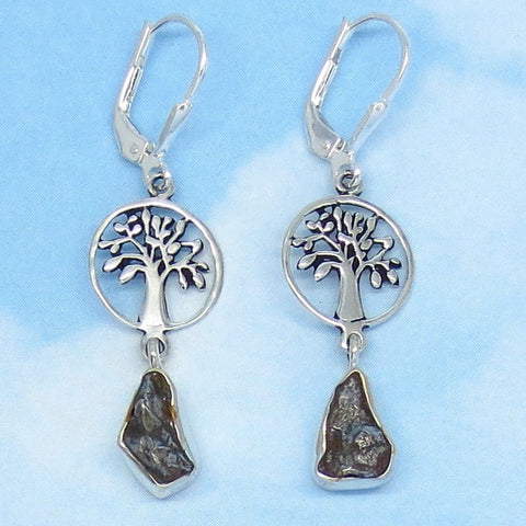 Meteorite Campo del Cielo Tree of Life Earrings - Leverback - Sterling Silver - Long Dainty Dangles - Natural Genuine Real - su171313