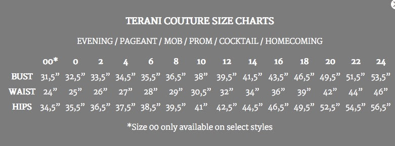 Terani Couture 1712p2534 Prom Homecoming Pageant Formal Dress Anna