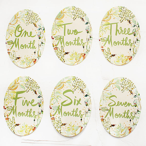 Hand Painted Watercolor Monthly Milestone Cards - Neutral
