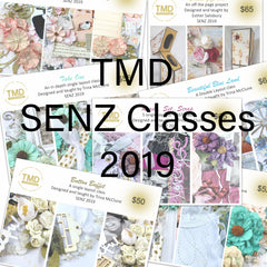 SENZ classes 2019