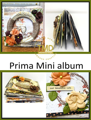 SENZ 2018 - Saturday 9.30am – 2pm (with lunch break in middle) - Prima Mini album