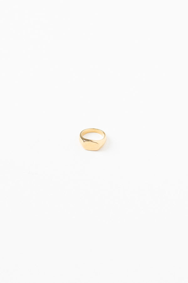 Signet Ring - Gold Plated