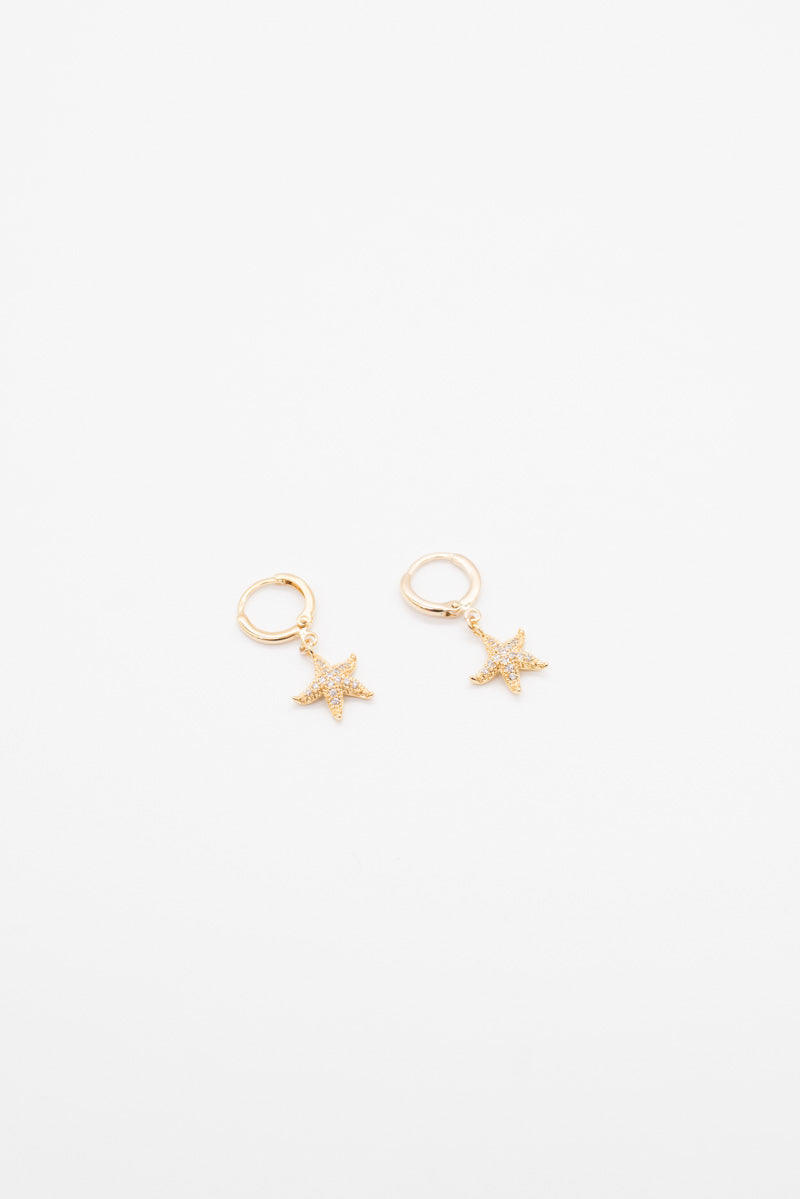 Star Fish Earrings - 14K Gold Plated