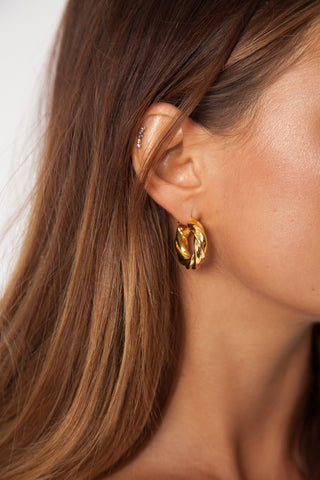 Clam Shell Earrings - Gold Plated
