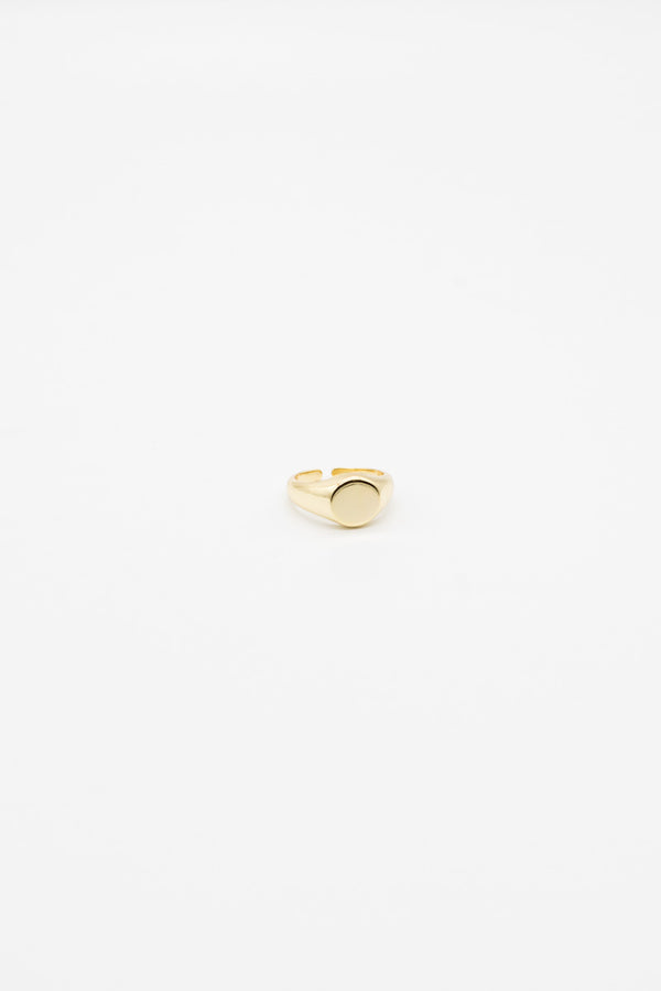 Signet Ring - 14K Gold Plated