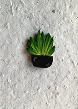 Load image into Gallery viewer, Fridge Magnet - Snake Plant