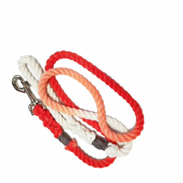 Orange Ombre Rope Leash (Rescue Awareness Leash)