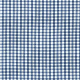 Gingham Cotton Woven. Robert Kaufman. LA Finch Fabrics. Apparel Fabric for Clothing.