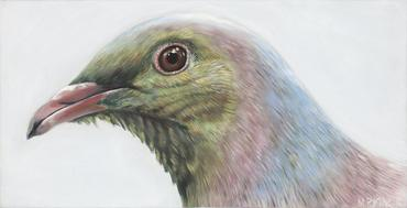 "Wood pigeon Bird ""Gustav"" Art Print"