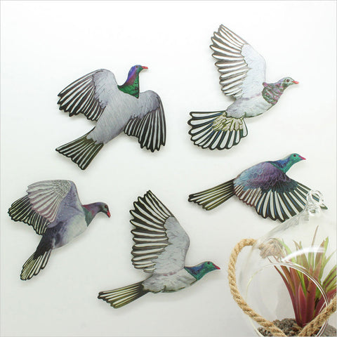 Kereru Bird Wall Set