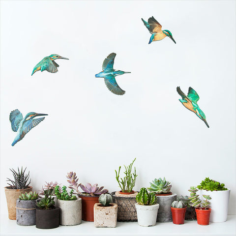 Kingfisher Bird Wall Set