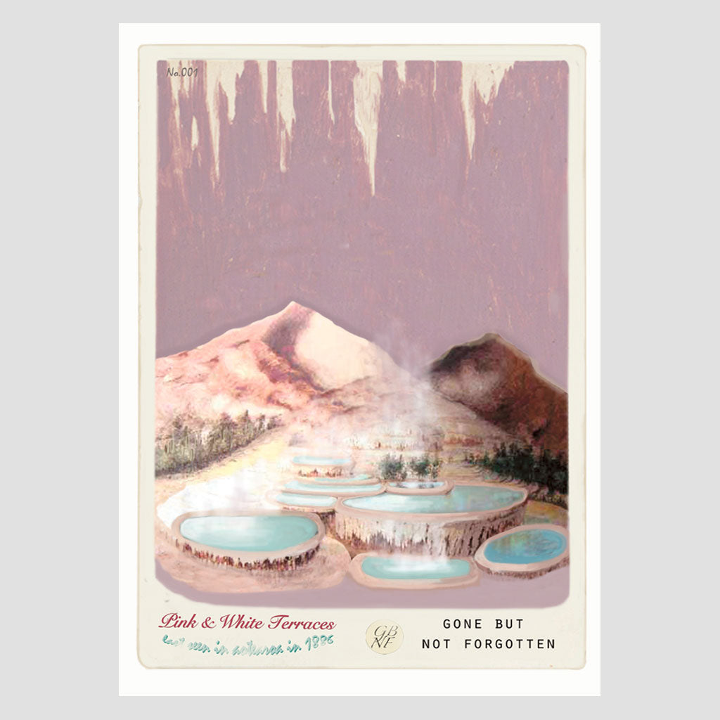 Pink & White Terraces - Art Print