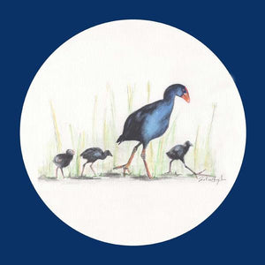 Pukeko - Greeting Card - Melissa Sharplin - Design Withdrawals
