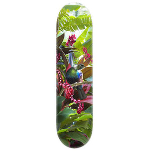Lucy G Tropical NZ Tui - Skate Deck - Design Withdrawals - Design Withdrawals