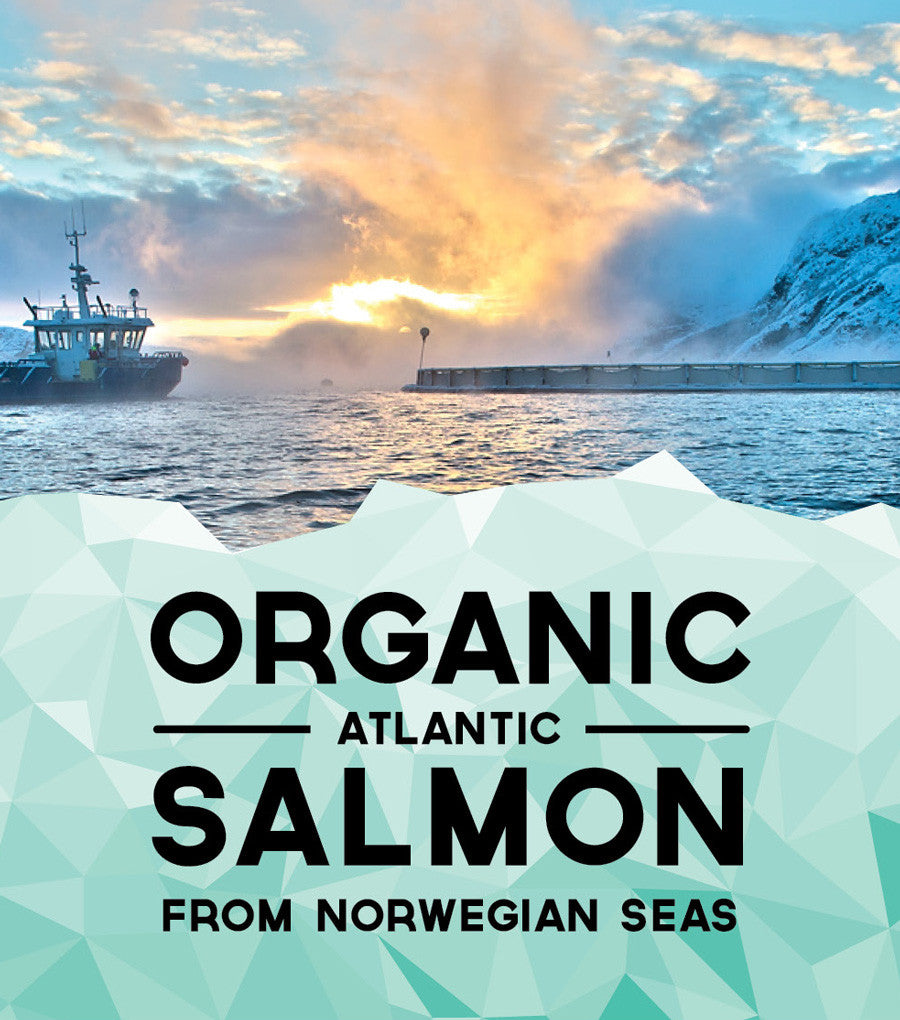 This Fish Organic Atlantic Salmon 280g (2 Portions Per Pack)