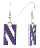 Northwestern Crystal N Logo Fish Hook Earrings