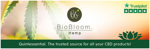 Biobloom CBDa Heavy CBD Oil Banner 2018