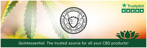 CBD Brothers UK / Cornwall CBD Oils & Pastes Banner