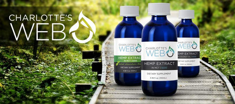 Charlotte's Web CBD oil USA - Cornwall UK