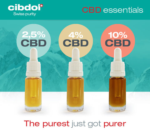 Cibdol Golden CBD Oil UK - The King Of CBD Supermarkets in the UK Quintessential CBD