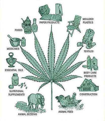 Hemp uses - reasons to keep it restricted