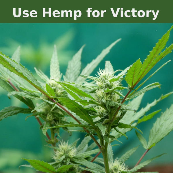 Use Hemp for victory and package your goods in it