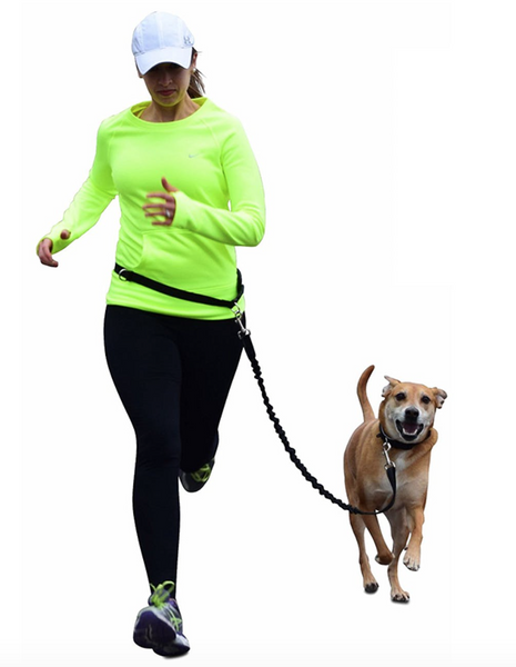 Waloo Pets Hands Free Pet Running Leash