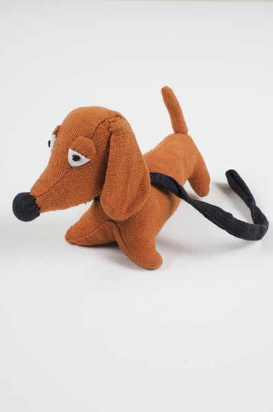 Kamil - loyal dachshund for Mike and Dora