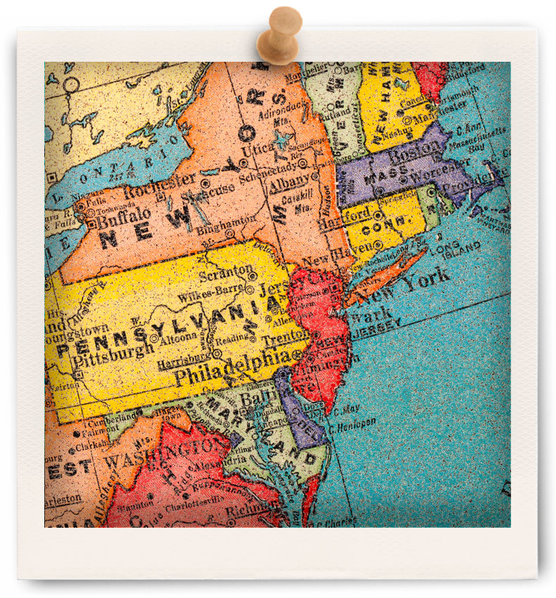Cork board maps us world maps printed on cork corkboard use cork board maps in a family room kids bedroom or as a conversation piece gumiabroncs Gallery