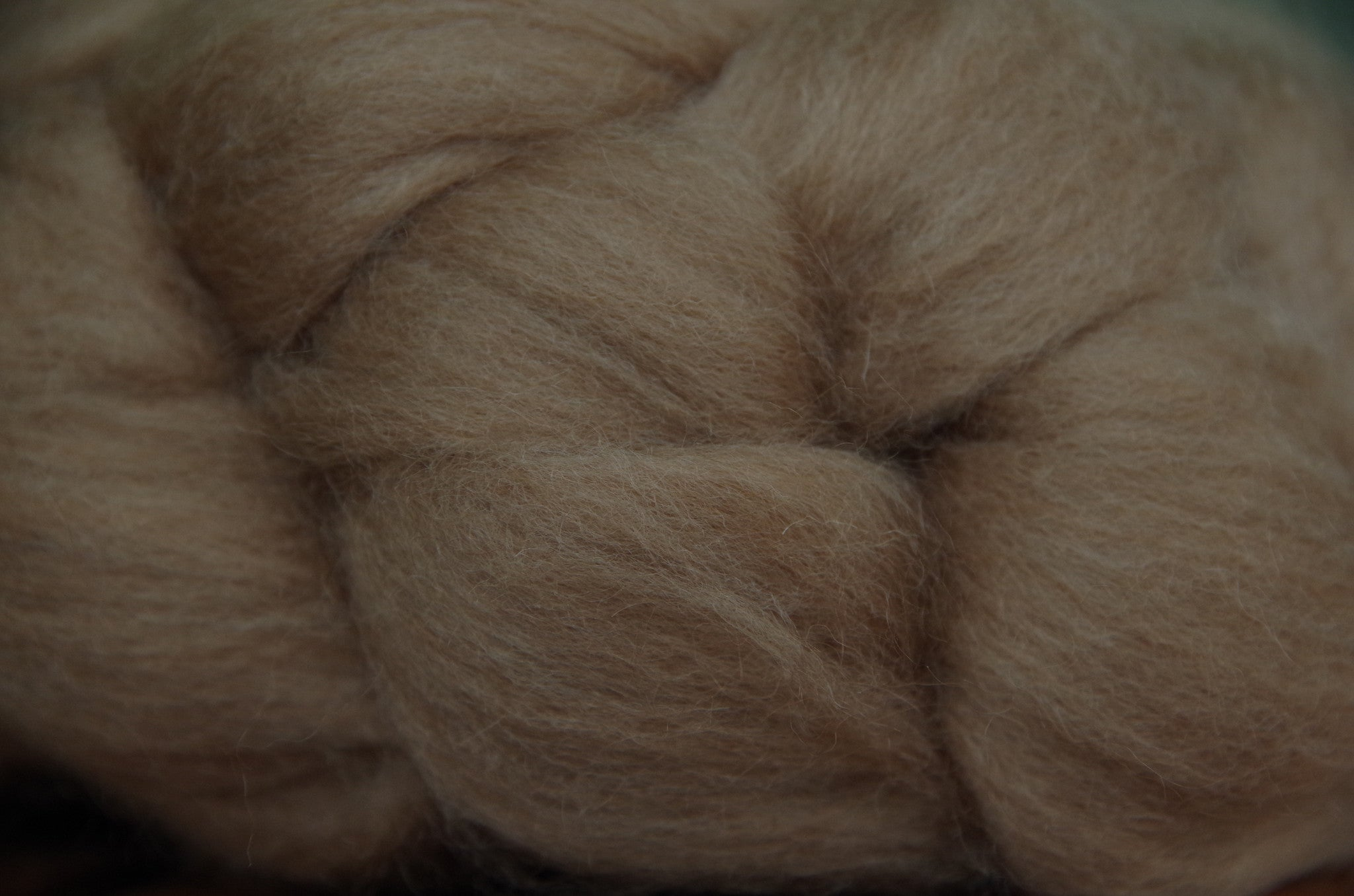 Baby Camel Combed Top, Undyed