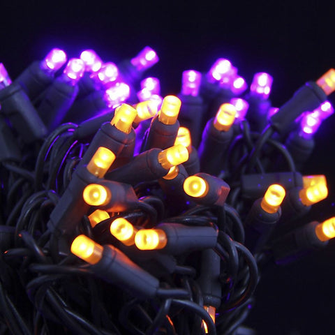 Seasonal Source - 5MM50PO-F - Halloween Lights 5MM LED, Purple and Orange Frost, Black Wire, 6 Inch Spacing, 50 Bulbs - Seasonal Source