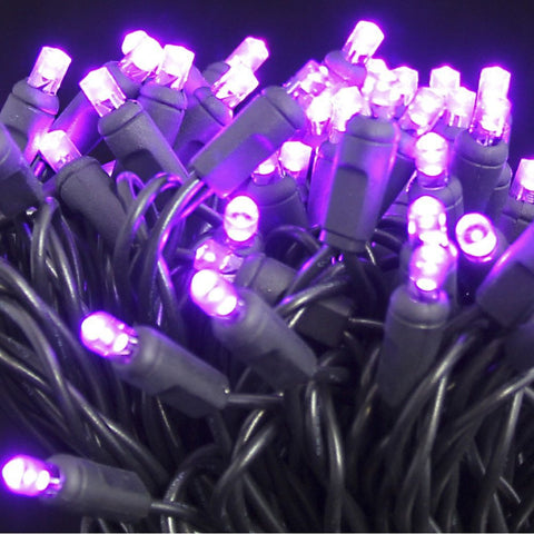 Seasonal Source - 5MM50P-B - Halloween Lights 5MM LED, Purple Frost, Black Wire, 6 Inch Spacing, 50 Bulbs - Seasonal Source