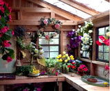 Outdoor Living Today - 12 x 12 Sunshed Garden Shed with ... on Outdoor Living Today Sunshed id=63139
