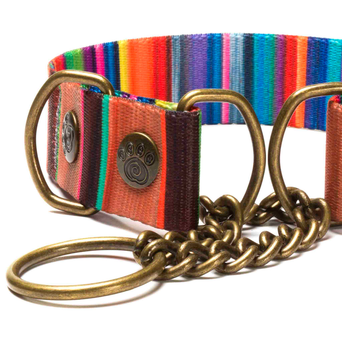 Colorful Martingale Dog Collar | Havana Exotic Design