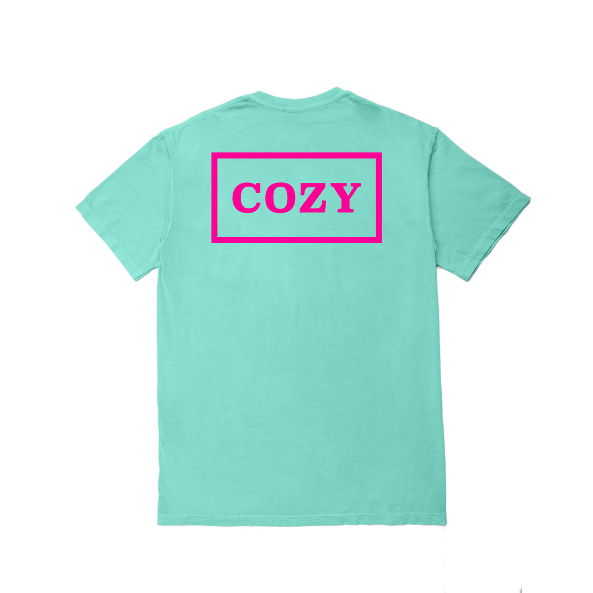Cozier Box Tee - Mint