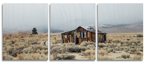 Eastern Sierra House Wood Print | Portrait Split Panel 1