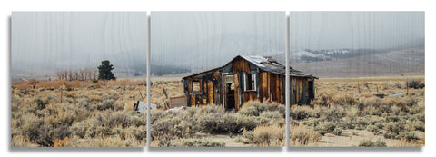 Eastern Sierra House Wood Print | Landscape Split Panel 1