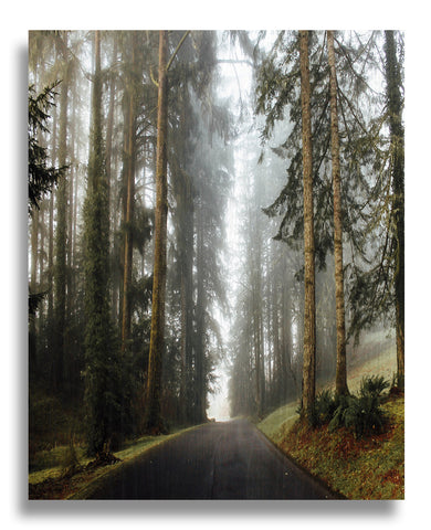 Foggy Oregon Wood Print | Single Panel