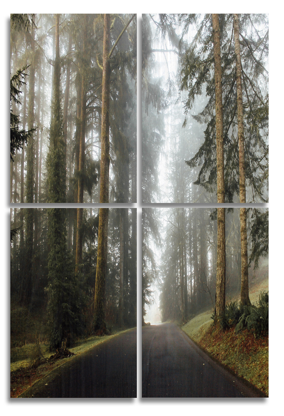 Foggy Oregon Wood Print | Portrait Split Panel