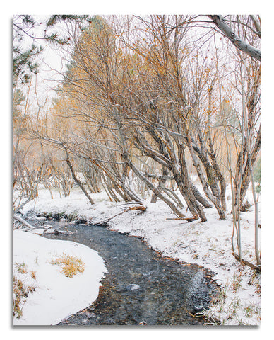 River to June Lake Wood Print | Single Panel