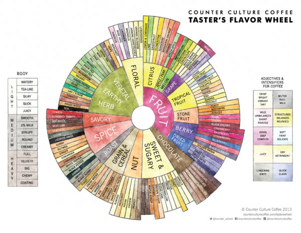 Counter Culture's Flavor Wheel