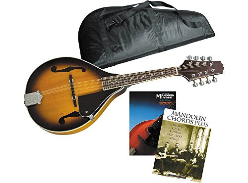 Rogue Mandolin Package