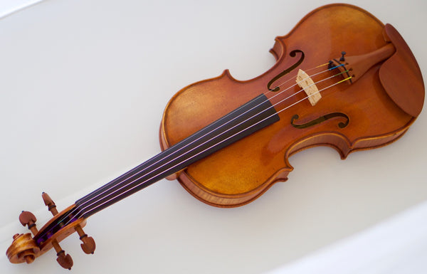 Scott Cao STV-950 Fiddle