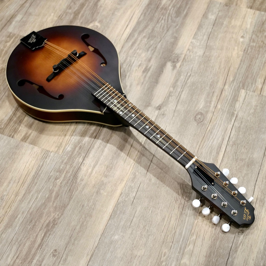 The Loar Electric LM-110E Mandolin with Pickup
