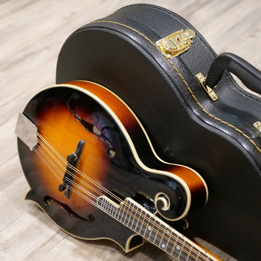 The Loar LM-600E-VS Electric Mandolin